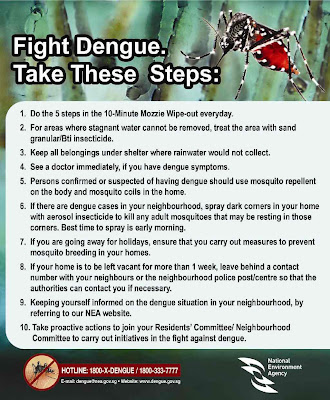 dengue+fever treatment