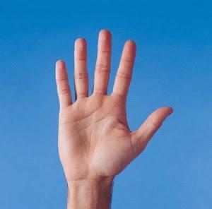 ماهو سر الخطوط التى في يدك ?!