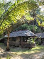 Rimba Resort huts, Pulau Sibu