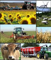 Agro-industry-Agroindustry-Agroindustri-Agroindustria