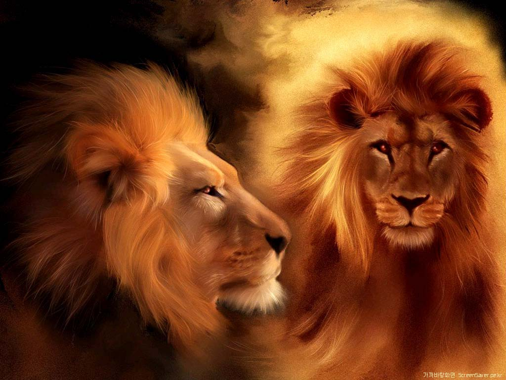 Lion wallpapers for mobile ~ unique animal wallpapers