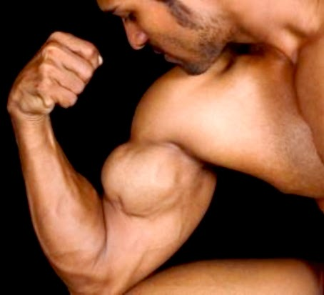 muscle arms bicep