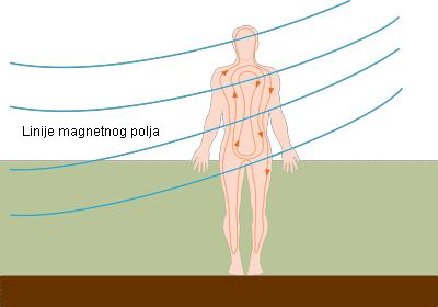Linije magnetnog polja