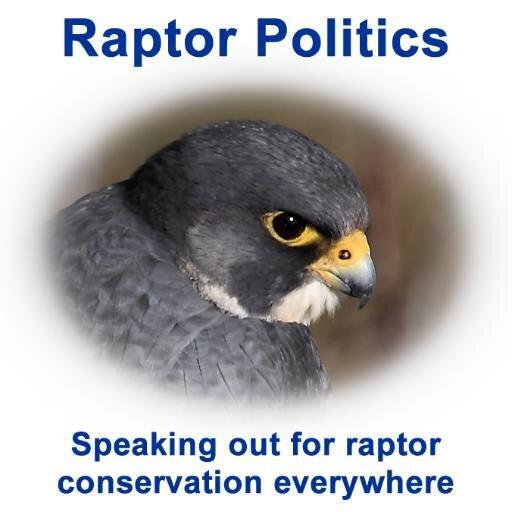 RAPTOR POLITICS
