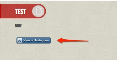 How Instagram Badge Will Apear On Your Website
