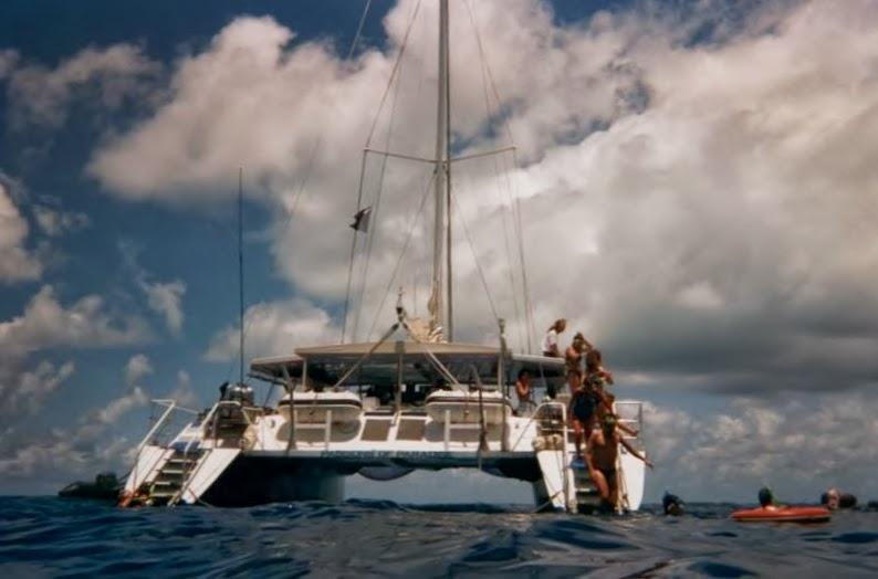 Gran barrera coral australia, bucear, diving, snorkel, Australia,