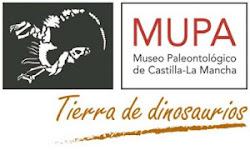 MUSEO PALEONTOLÓGICO DE CASTILLA-LA MANCHA