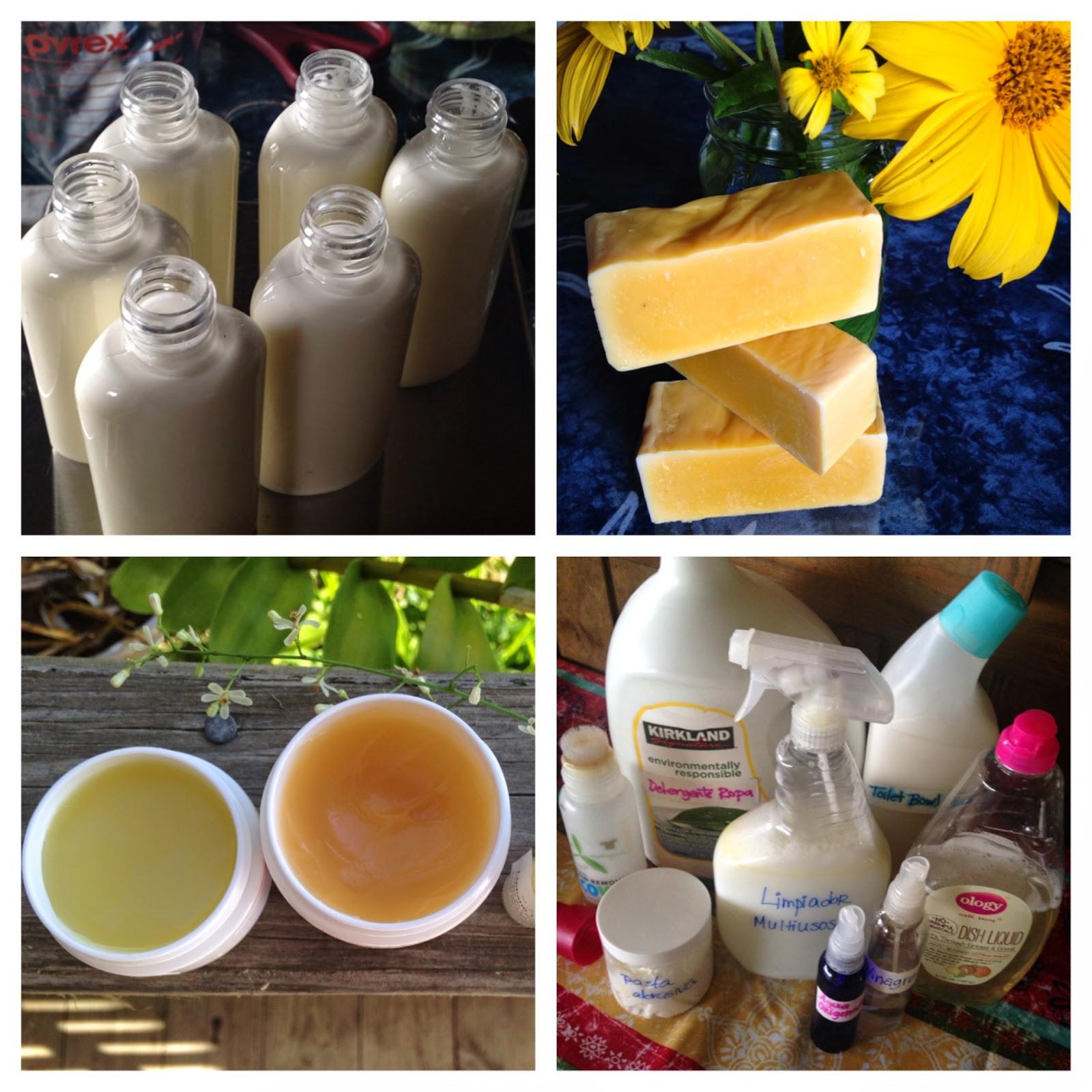 Siembra conciencia formaci n online plantas medicinales y for Articulos para el hogar online