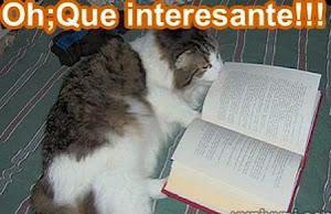 HAY LIBROS INTERESANTES