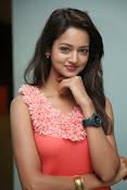Cute Shanvi Glamorous Photos Gallery-thumbnail-18