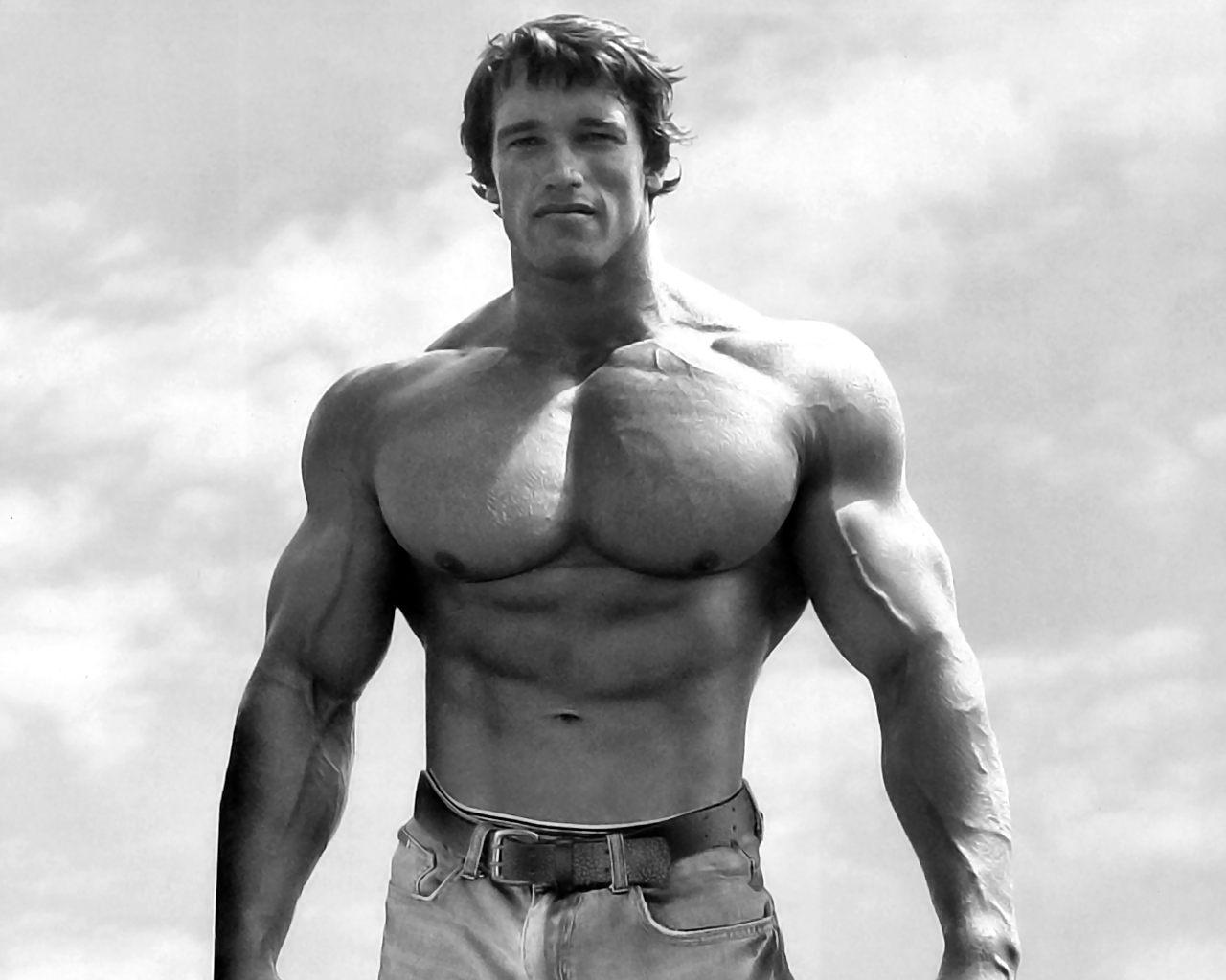 http://2.bp.blogspot.com/-wZFLCkhjdYk/T_x4FJxVVwI/AAAAAAAAAFM/MSvSmh0iay0/s1600/Arnold+Schwarzenegger+Bodybuilding+Wallpaper-26.JPG