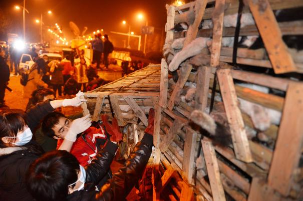 BEBERAPA aktivis haiwan mengangkat kurungan kayu yang mengandungi kucing di sebatang jalan raya di Changsa kelmarin.