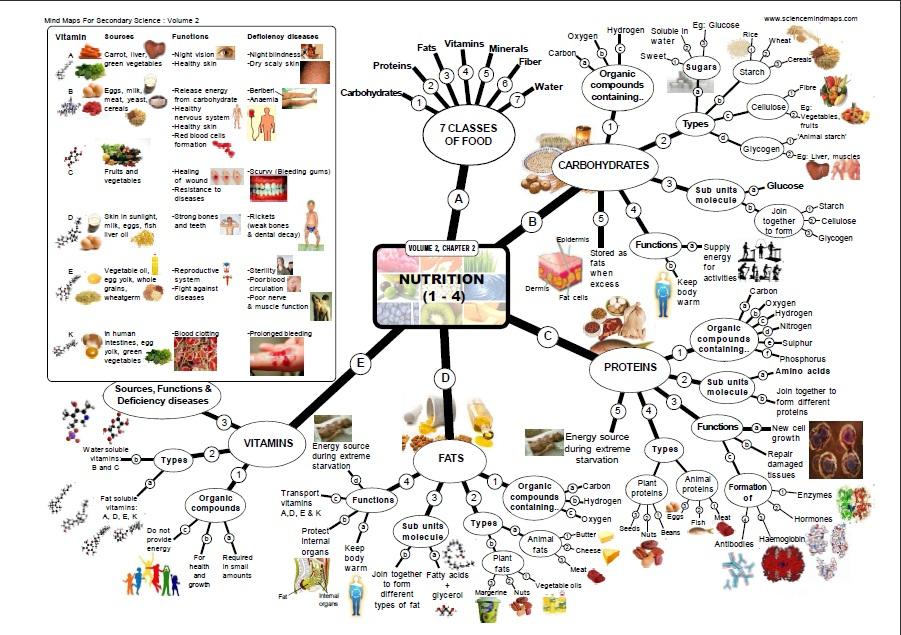 contoh mind map sains blog untuk pendidikan khususnya siswa dan