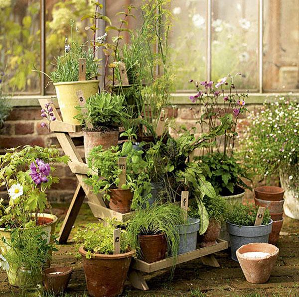 huerto en macetas -escalera madera- kitchen-garden