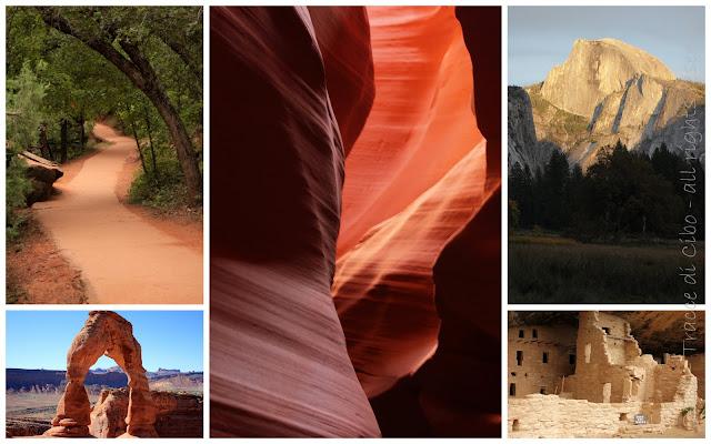 antelope canyon, sequoia park, zion park, yosemite park