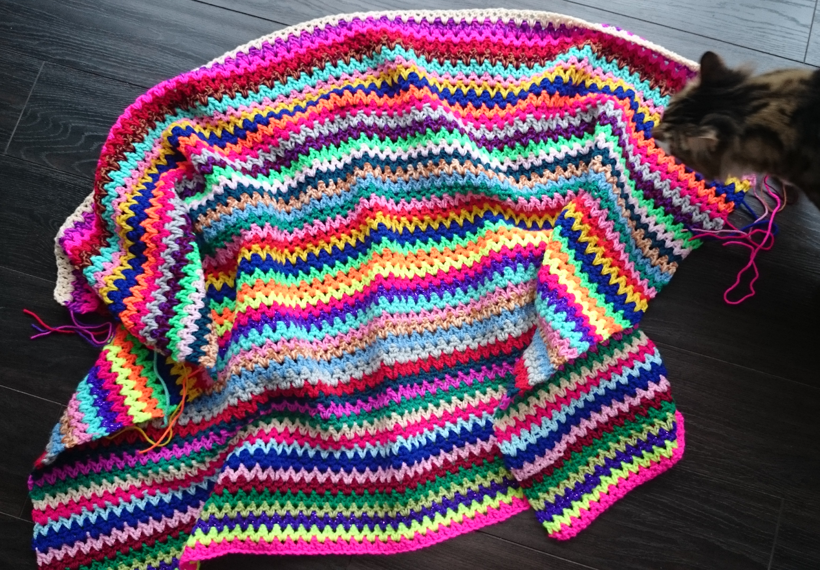 v stitch vstitch crochet blanket update crocheting cat photo bomb