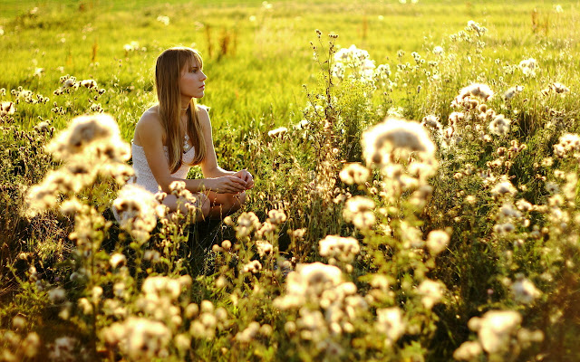 Beautifu Girl Between Flowers Meadow HD Wallpaper