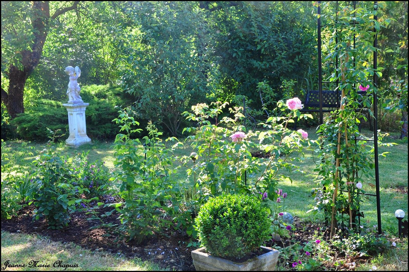 le jardin du bois joli petite balade dans ma roseraie. Black Bedroom Furniture Sets. Home Design Ideas