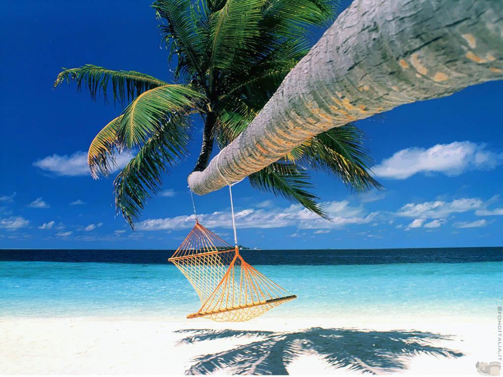 Fantasy & SciFi Lovin' Reviews: Vacation