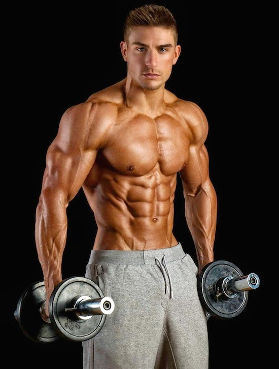 The Best Bodybuilding Workouts Program: bodybuilding and ...