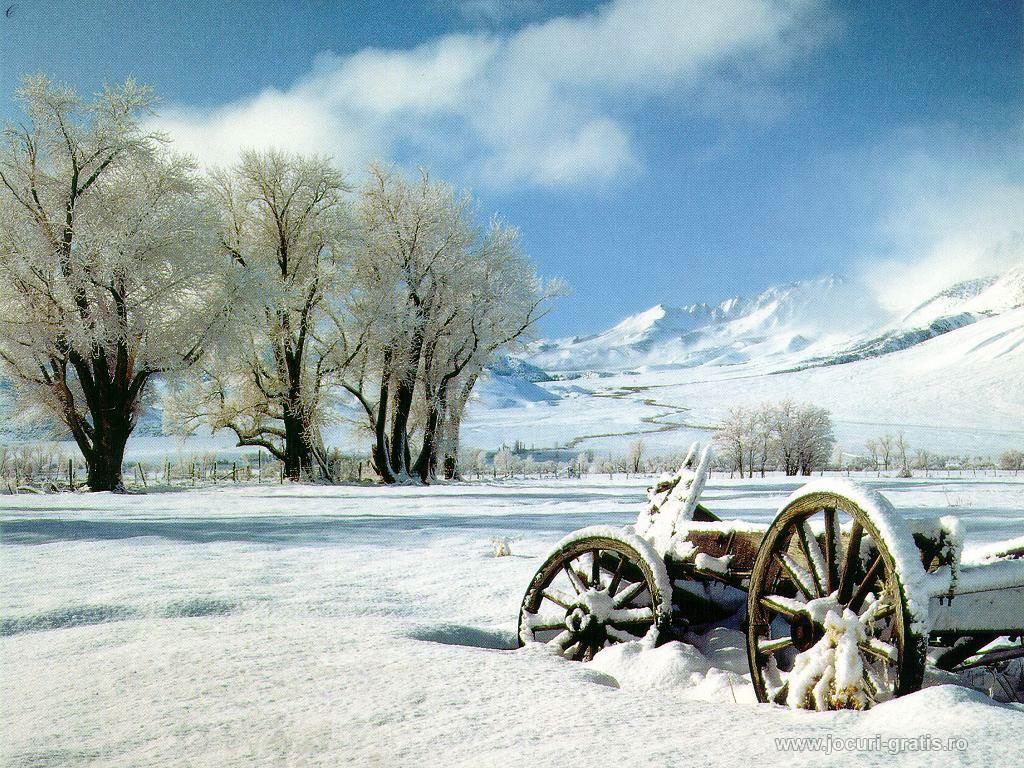 http://2.bp.blogspot.com/-waVoXYVKLxQ/T8AtK8pCUuI/AAAAAAAAAus/V65g_d1VwuA/s1600/iarna+desktop+1.jpg