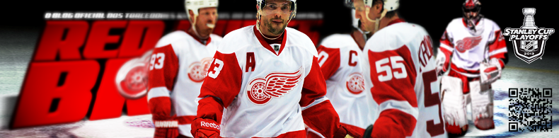 Red Wings Brasil