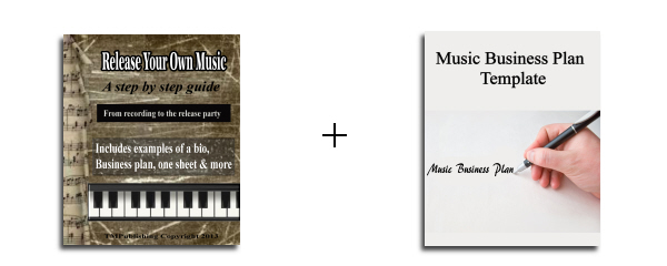 template for writing a music business plan