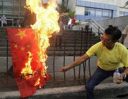A protester burns a Chinese flag