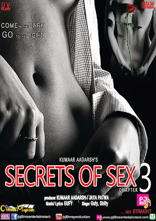 Poster Of Hindi Movie SOS: Secrets of Sex Chapter 3 2014 Full HD Movie Free Download 720P Watch Online