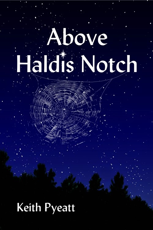 <i><b>ABOVE HALDIS NOTCH</b></i>