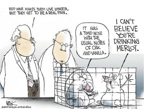 Cartoon Lead Extention : Wine and health of mice men merlot