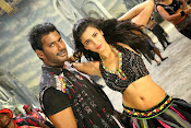 Pooja movie photos gallery-thumbnail-1