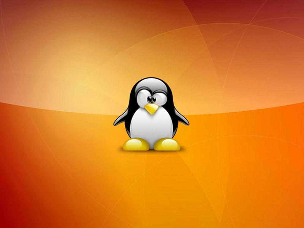http://2.bp.blogspot.com/-wbJswnbjNGU/Ti96CBDZrdI/AAAAAAAAAIM/HDMf9AuwvoI/s1600/super_tux_wallpaper_linux-1024x768.jpg