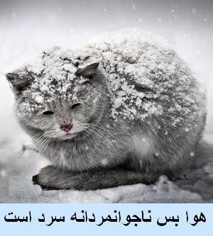 هوا بس ناجوانمردانه سرد است