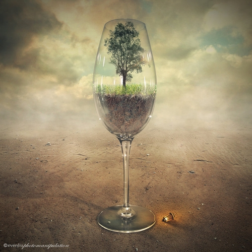 13-Glass-Of-Tree-Even-Liu-Surreal-Photo-Manipulations-and-the-Lantern-www-designstack-co