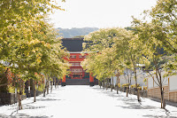 Shannon Hager Photography, Kyoto, Fushimi-Inari Shrine