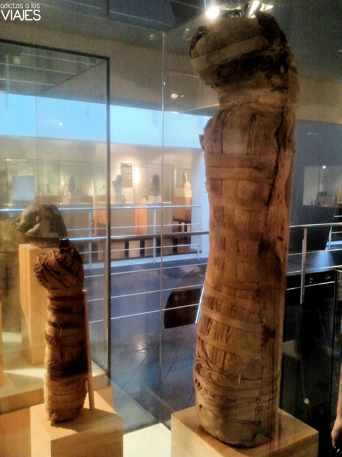 paseando entre momias en el museo egipcio de barcelona