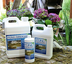 Pond Magician - The Organic Pond Cleaner