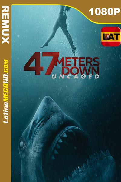Terror a 47 metros: El segundo ataque (2019) Latino HD BDREMUX 1080P ()