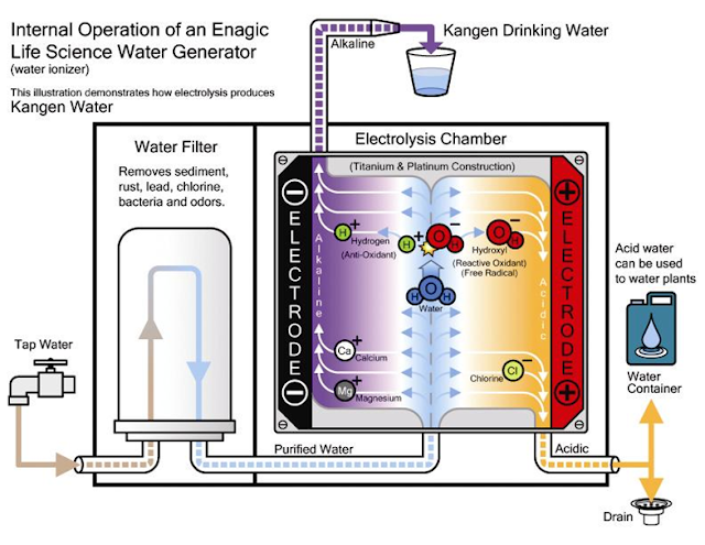 Ozone Drinking Water Cancer