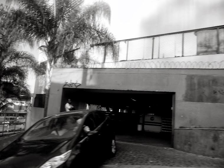 CA -carro palmeira - belo horizonte -MG / BRASIL