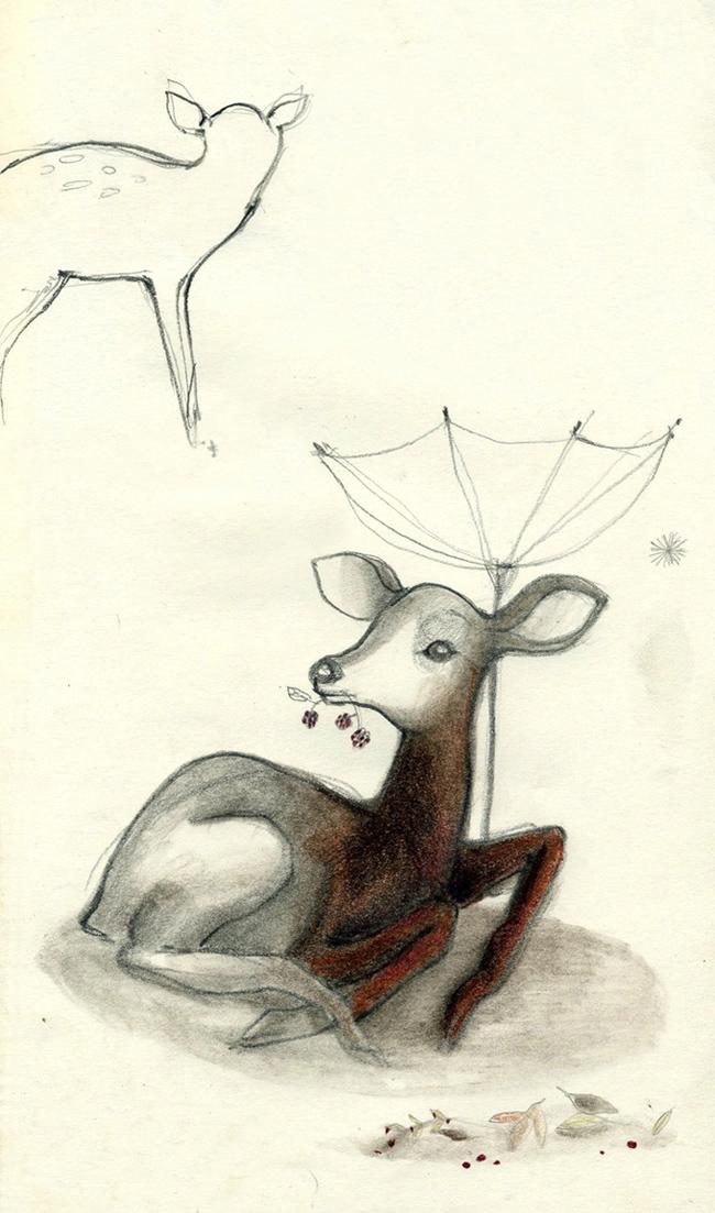 bestiario illustrato francesca ballarini