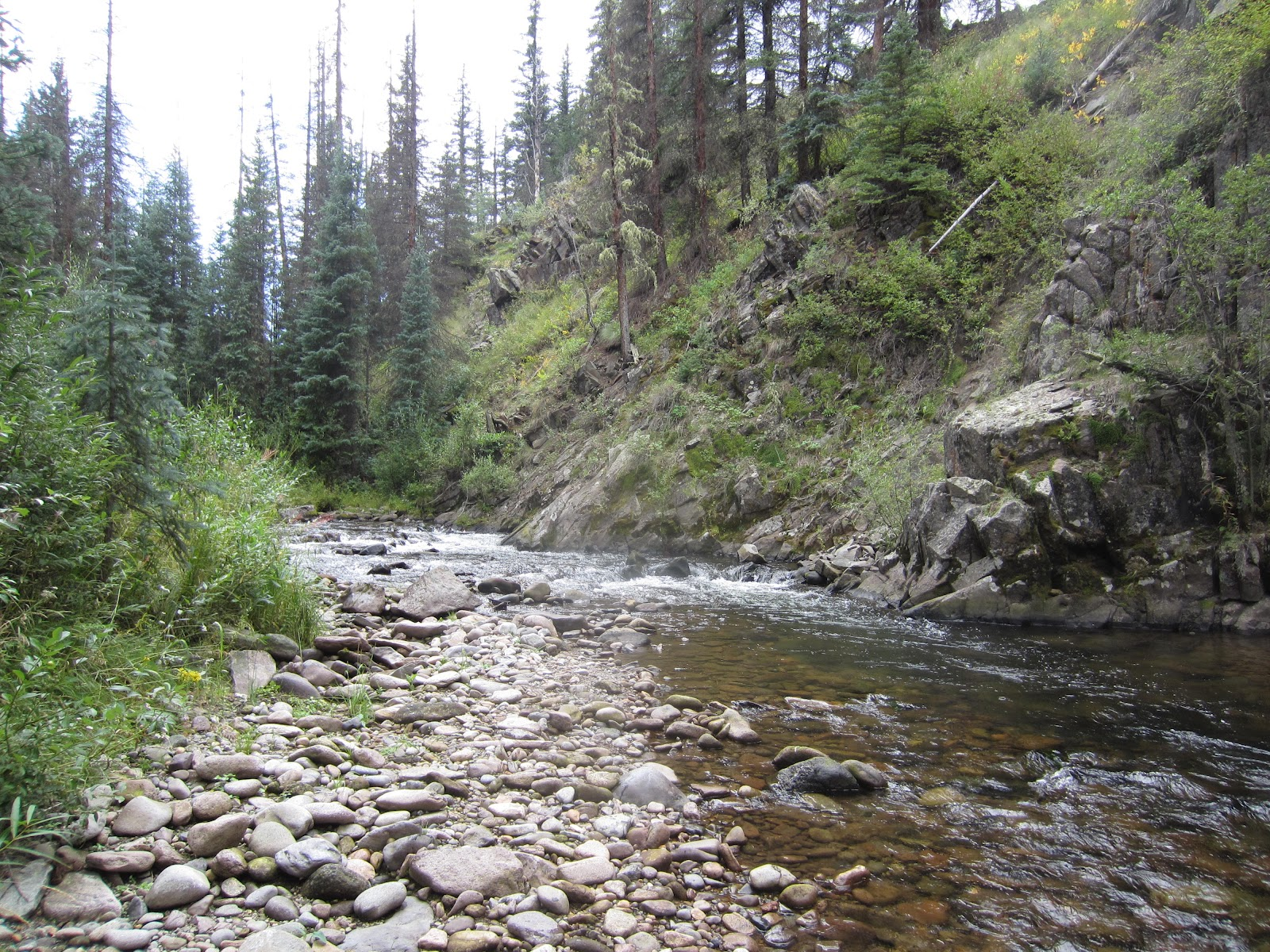 fishing weminuche wilderness area hiking