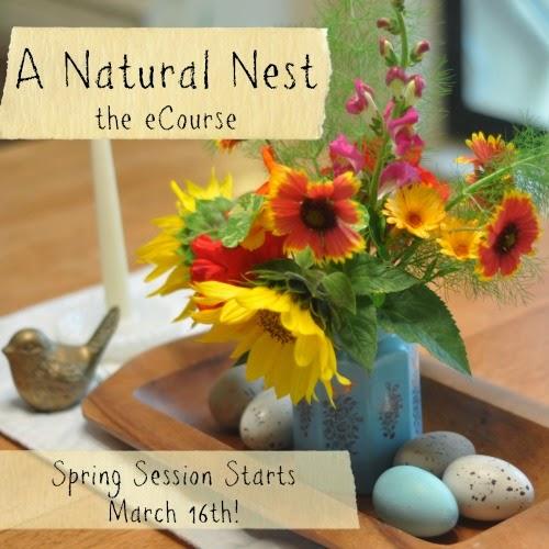 http://anaturalnester.blogspot.com/p/a-natural-nest-ecourse.html