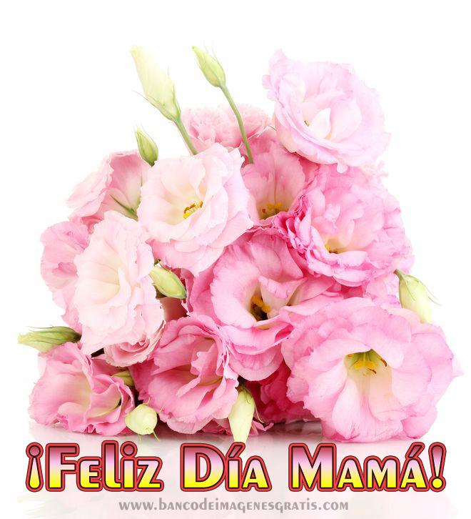 Banco De Imágenes Gratis Feliz Día Mamá Postales Para Compartir