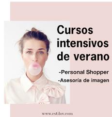 CURSOS INTENSIVOS DE VERANO CON ESTILO V