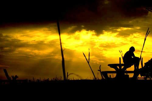 Sendiri di Ufuk Senja | Kumpulan Puisi Sepi