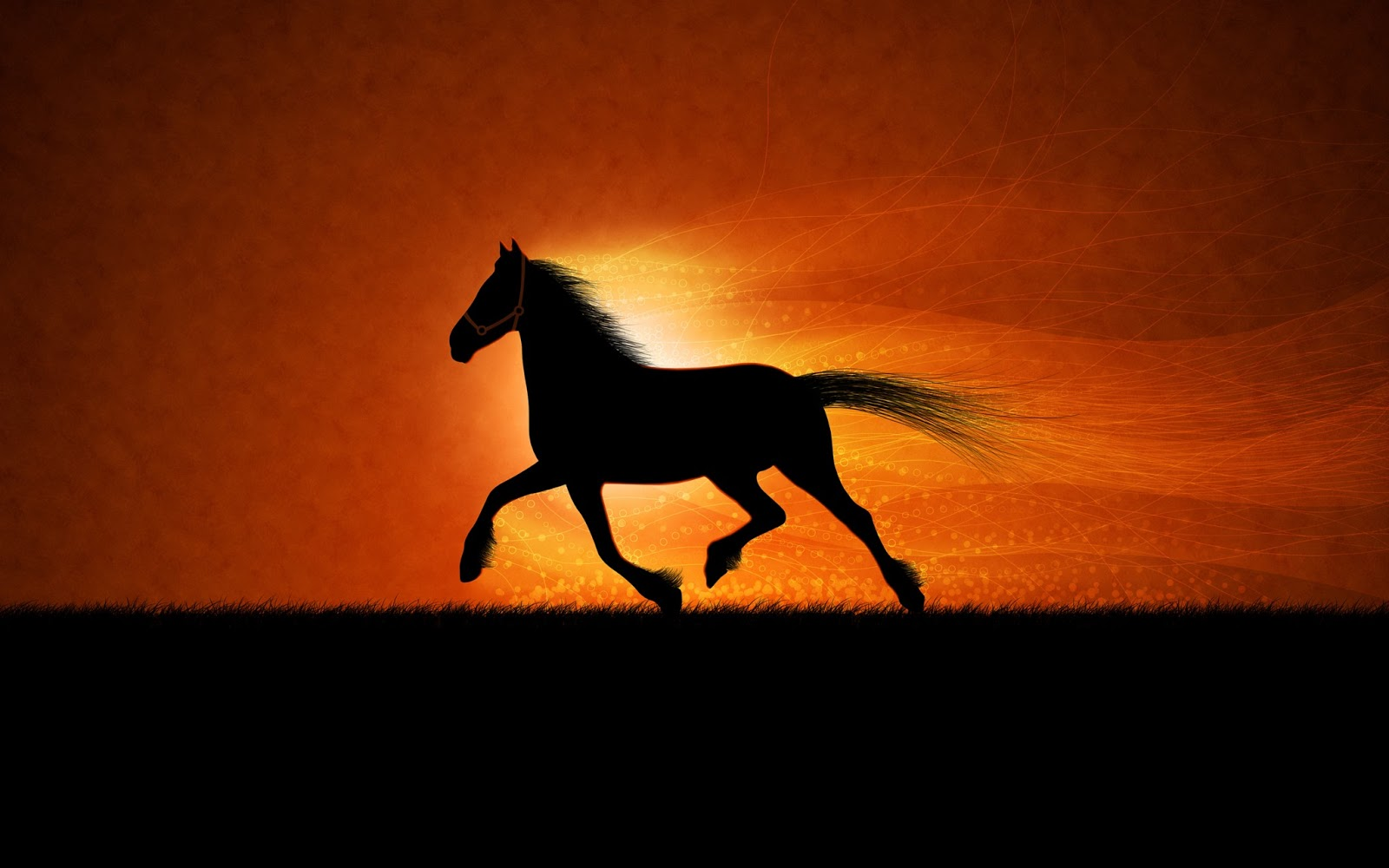 Popular   Wallpaper Horse Nightmare - running+horse+hd+wallpaper+free  You Should Have_76755.jpg