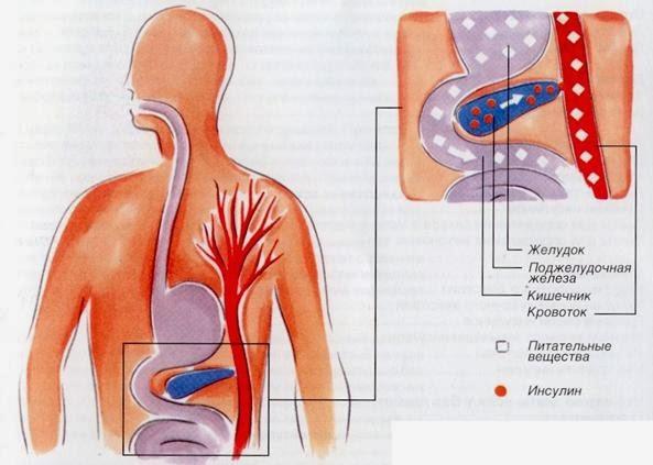 питание больных диабетом 2
