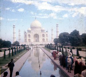 The Tahaj Mahal
